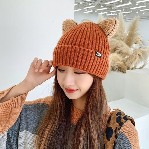 Cute Warm Knitted Hat With Ears
